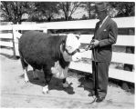 1950: Dr. Ralph Brown Draughon and Judge Roy Bean, Grand Champion Steer