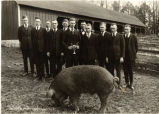 1910s: Hog judging juniors