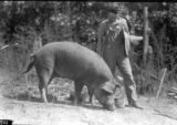 Marvin Payne and his eight-month-old Chester White pig in Walnut Grove, Etowah County, Alabama