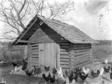 Mrs. Jesse Paulk's first poultry house in Montgomery County, Alabama