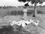 Bessie Terry feeds her White Leghorn chickens in Lawrence County, Alabama