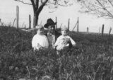 M. W. Hall and his two little boys in a vetch field in Bullock County, Alabama