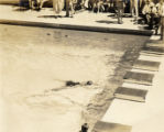 Military swim meet: swimmer finishing race, Hawaii, 1930s 1