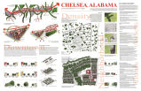 Chelsea, Alabama Community Plan 2