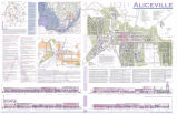 Aliceville, Alabama Community Plan