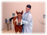 Vet student with foal